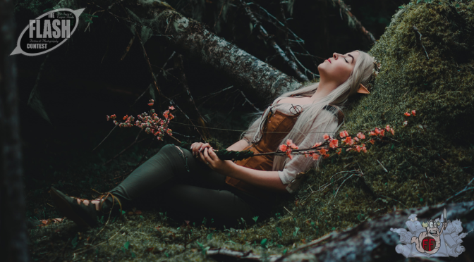 "Winner: ""Huntress of the Woods"" by Melissa Bishop 